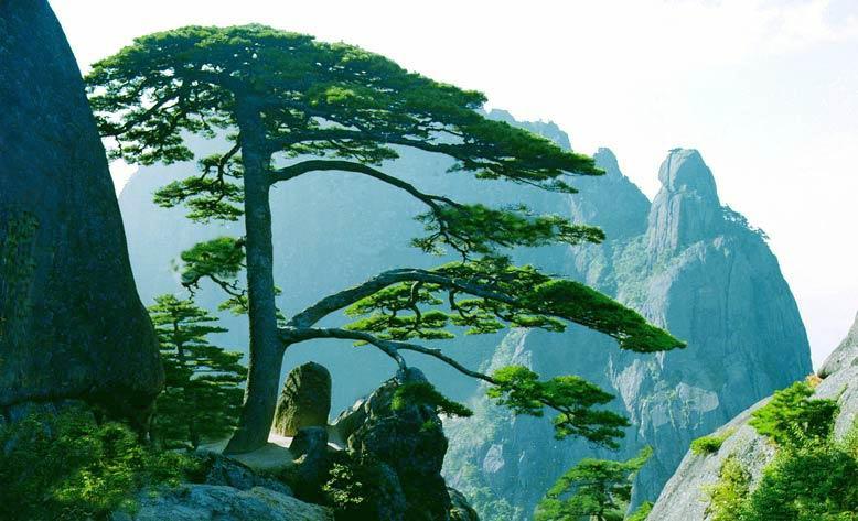 Vé máy bay Eva Air đi Hoàng Sơn, Trung Quốc